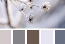 Color Inspiration / by Navy & Lavender
