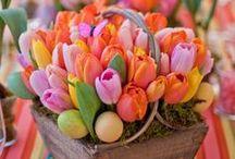 Easter / by Jennifer Jackson