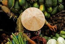 TRAVEL IN VIETNAM