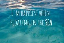 Where Mermaids Exist / Mermaids, & Sun, & Everything Tropics / by Allie Reina