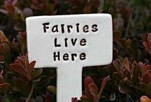 Fairy Gardens / by Colleen Burki