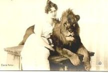 Woman & Lion / Imagery of the Cusp of Leo and Virgo, and the Strength Tarot Card.
