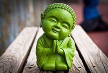 Buddha Buddies / Our Board on Mindfulness and Meditation