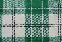 Canna, Dress Green