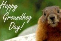 Holidays - Ground Hog Day