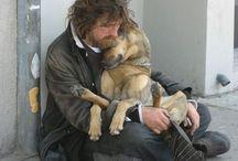 Man's Best Friend / by Author S.R. Johannes (Shelli)