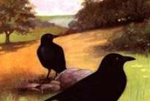 As the crow flies / by Gloria Erickson