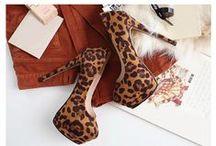 Shoes Wonderland