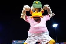 LLoyd Loves the Long Island Ducks! / LLoyd Staffing supports the Long Island Ducks Baseball team.  We have been fans and season ticket holders since they opened the ball park!