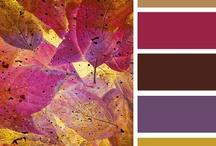 kleur / by Riki Gremmen