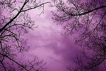 purple / purple love! / by Jessyca Garcia