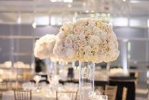 White Wedding Ideas / White weddings are as pure as they come, bringing a fresh elegance with an air of romance that is truly unforgettable. From cool winter events to modern ballroom celebrations, white wedding ideas never cease to inspire. / by MODwedding