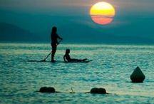 Paddle Board / by Danie Zepeda