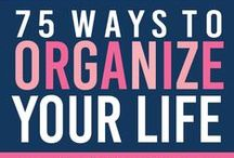 Organize / Everything in it's place. Visit me at http://www.renaissancemama.com!