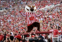 Bucky Badger / He's the fur of the university.  / by University of Wisconsin-Madison