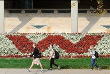 Our Favorite Campus Places / by University of Wisconsin-Madison