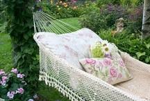 Backyard Ideas / by Laurie Stone