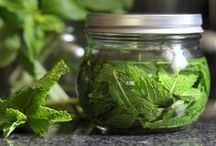 Canning  & Preserving Recipes- Food Storage / canning and preserving recipes.