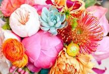 Lovely Bouquets (& bout.)