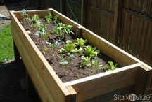 DIY Planter Box - Urban Green Thumb / Learn how to make your own planter box. Grow your own herbs and veggies! Great for tight spaces, urban locations, schools. Download plans, watch videos by Loni Stark who shows you that's it's not too hard, and even... fun!