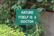 Health is Wealth   Santé