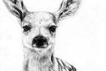 hertjes/ deer