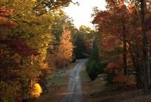 Fall in Blue Ridge
