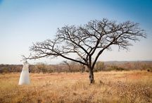 Safari, Bush & Game Lodge Weddings