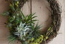 Ideas: Wreaths   Door Decor / by Deanna Denk