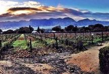 This Is Where I Live / Paarl Western Cape  South Africa
