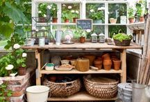 Outdoors: Shed/Greenhouse Ideas / If only we didn't need our shed for storage.....