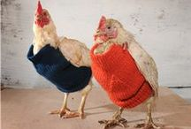 Knitting - Miscellaneous / Miscellaneous knitted item ideas and patterns / by Amanda Haggerty