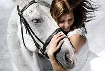 Romancing the Horse / by Carol ~