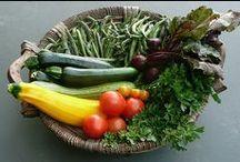 Healthy Living / by Sherrie Nackel