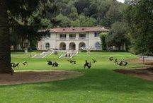 Montalvo Arts Center / Visited August 17, 2013, Admission: free, Website: http://montalvoarts.org/, Twitter:@montalvoarts