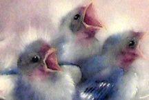 Ꭿཞɬ: Swallows... / Swallows birds tiengemeten watercoloring