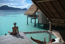 Eco Travel/Honeymoon / Voluntours, luxury eco escapes, making a difference, environmental working holidays. Will you choose to be conscious when you travel on your honeymoon? / by Eco Brides Magazine