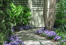 gardening / by Lee Anne La Forge