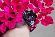 Floral & Botanical / by Neeltje van Bekkum
