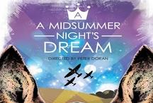 Midsummer Night's Dream / A Mappa Mundi/Torch Theatre/Theatr Mwldan Co-Production Friday 9th & Saturday 10th November 7.30pm