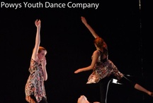 National Youth Dance Wales / Sunday 17th Feb 8pm / by Theatr Brycheiniog