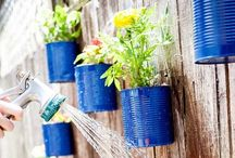 Gardening / Grow your dream garden with these blooming gardening ideas. Lots of great ideas for stellar garden parties too!