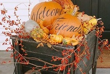 I LOVE the HOLIDAYS / Holidays are so festive. I love them all. This board has lots of fun ideas for everything from Valentines Day, the 4th of July, to the fall holidays, Halloween & Thanksgiving.  Christmas, however, has a board all it's own! / by Erin Bard