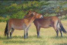 Susan Fox's Mongolia Paintings / Please contact the artist for availability.