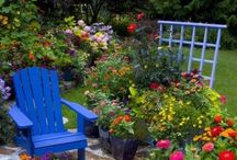 My Garden / Now and someday / by Debbie Cortinaz
