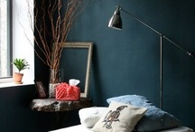The Decoration and Design / by Hannah Brevoort