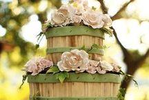 Pretty cakes