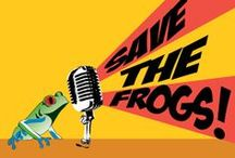 Students / Students can help SAVE THE FROGS! http://savethefrogs.com/students