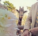 Zoo Wedding Inspiration / Plenty of zoos rent space for weddings. Here's a collection of our favorite zoo wedding ideas. We love the Santa Barbara zoo since it's close to our home town. Help list your local zoo on Raw Space and then host an event there!