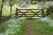 Farm Living / My dream life...